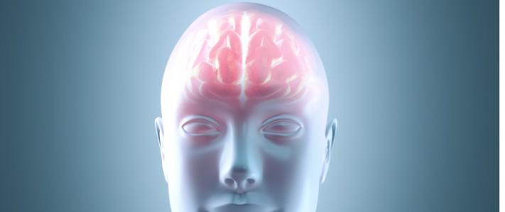 Illustrerad bild av en människa med synlig hjärna