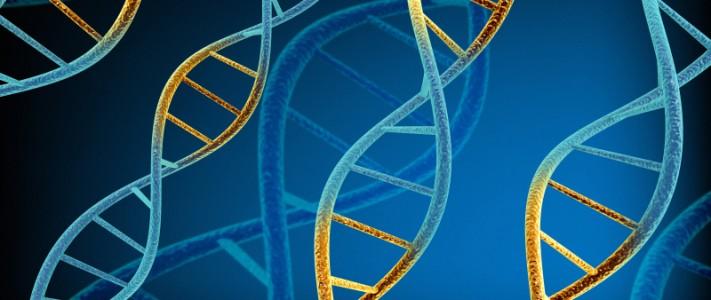 DNA dubbelspiral